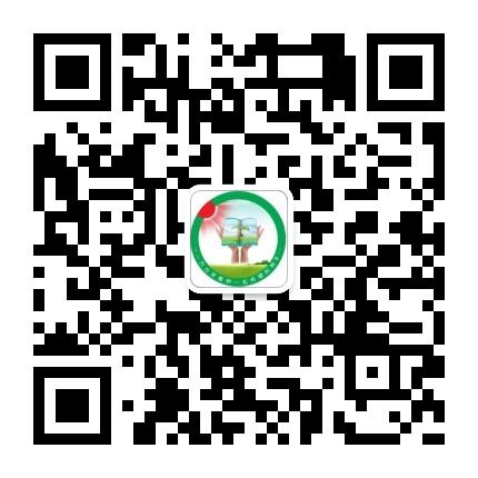 漯河市教育局
