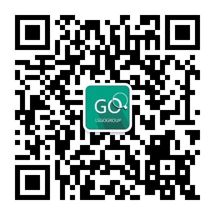 LSGO软件技术团队