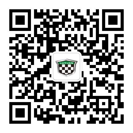 绿源电动车 (绿源电动车平台)