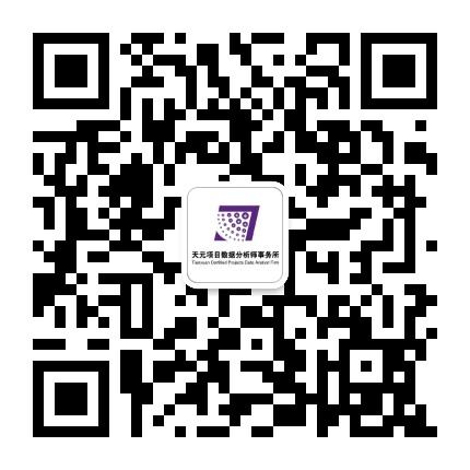 上海天元项目数据分析师事务所