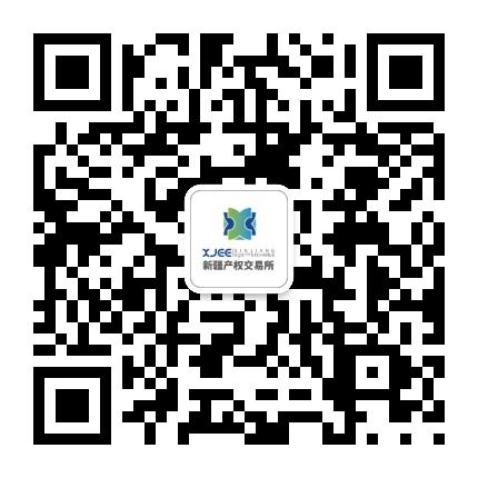 新疆产权交易所