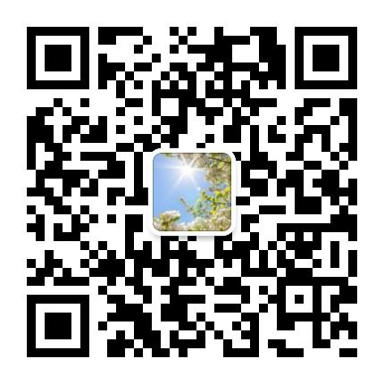 大凯爷的江湖微信公众号