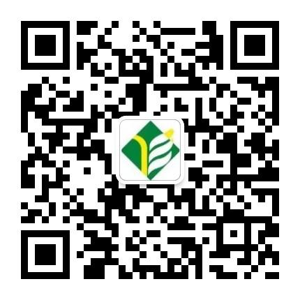 扬州教育在线